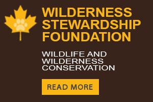 Wilderness Stewardship Foundation banner